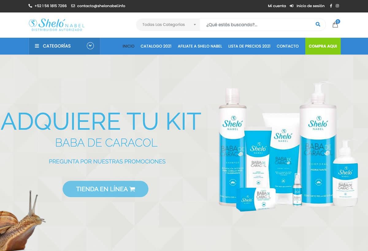 diseño de tiendas virtuales méxico